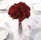 Decorative Fabric Red Roses