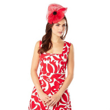 Debenhams Phase Eight Billie Fascinator
