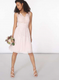 Dorothy Perkins - Showcase Blush Josie Prom Dress