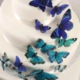 Beautiful Butteryfly Cake Sets