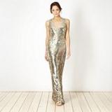 Debenhams - Star by Julien Macdonald - Designer gold sequin maxi dress