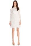 Coast - CHERISH FEATHER DRESS - - 2014 Collection