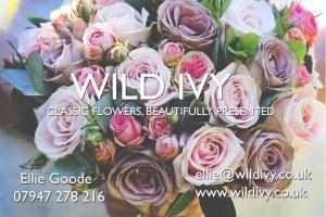 Wild Ivy